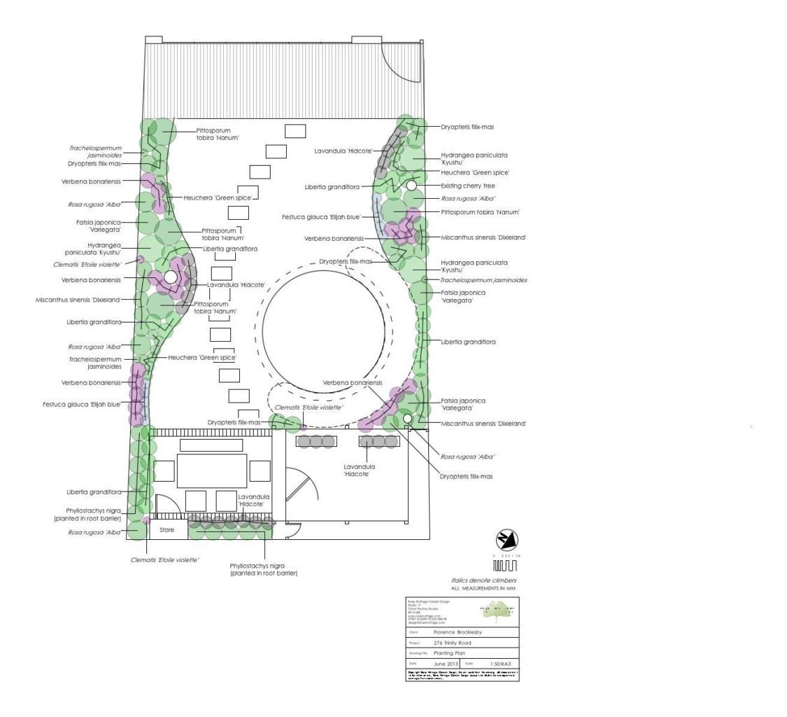 Trinity Road garden design London planting