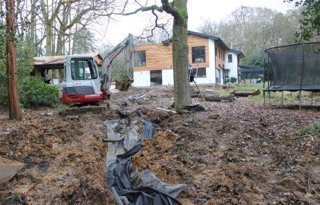 Woodland garden before construction